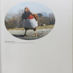 B_Froschbärfant-und-andere-Tiere-in-der-Kunst2-2011
